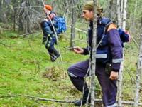 В Пензенской области найден пропавший пятилетний мальчик
